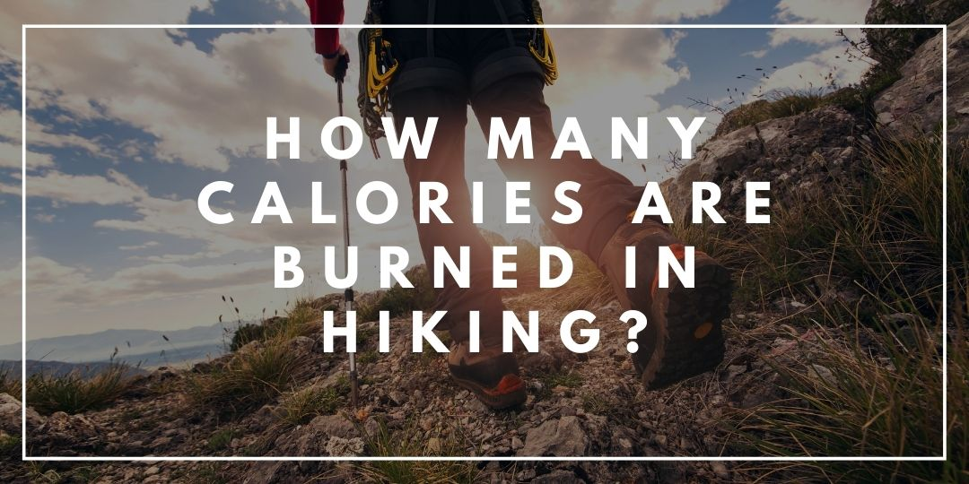 How Many Calories are Burned in Hiking_Trekkerr